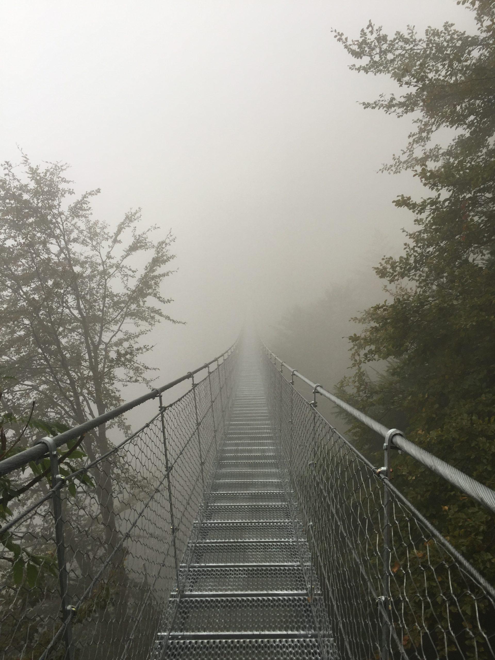 Ponte di corde avis valli del pasubio carlo costa archietto thiene (40)